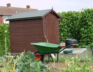 Allotment with wheelbarrow and shed | Photo by John Smith